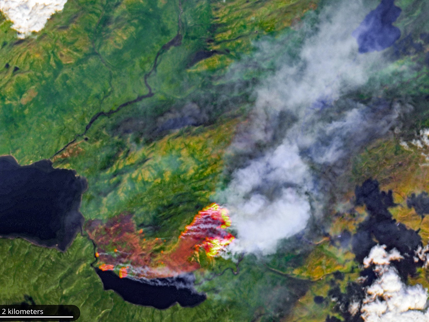 Image result for Huge swathes of the Arctic on fire, 'unprecedented' satellite images show