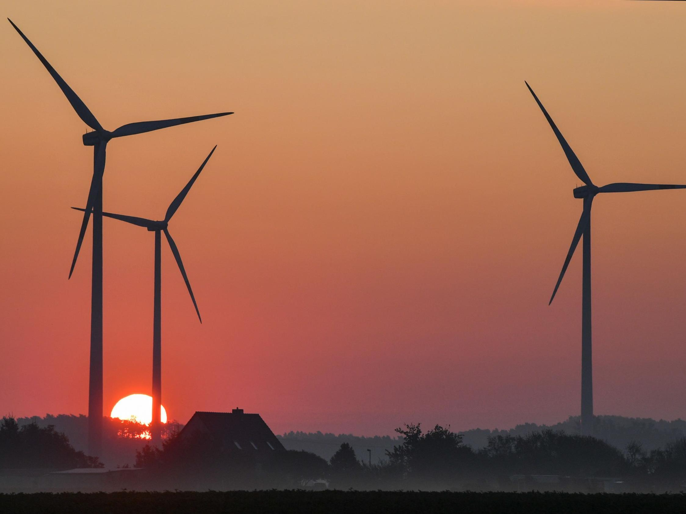 Renewable energy providing more electricity than coal and nuclear power combined in Germany
