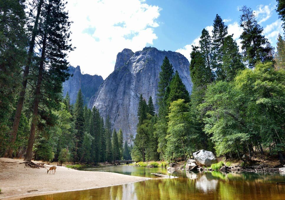 Tourist dies in accident near waterfall at Yosemite National