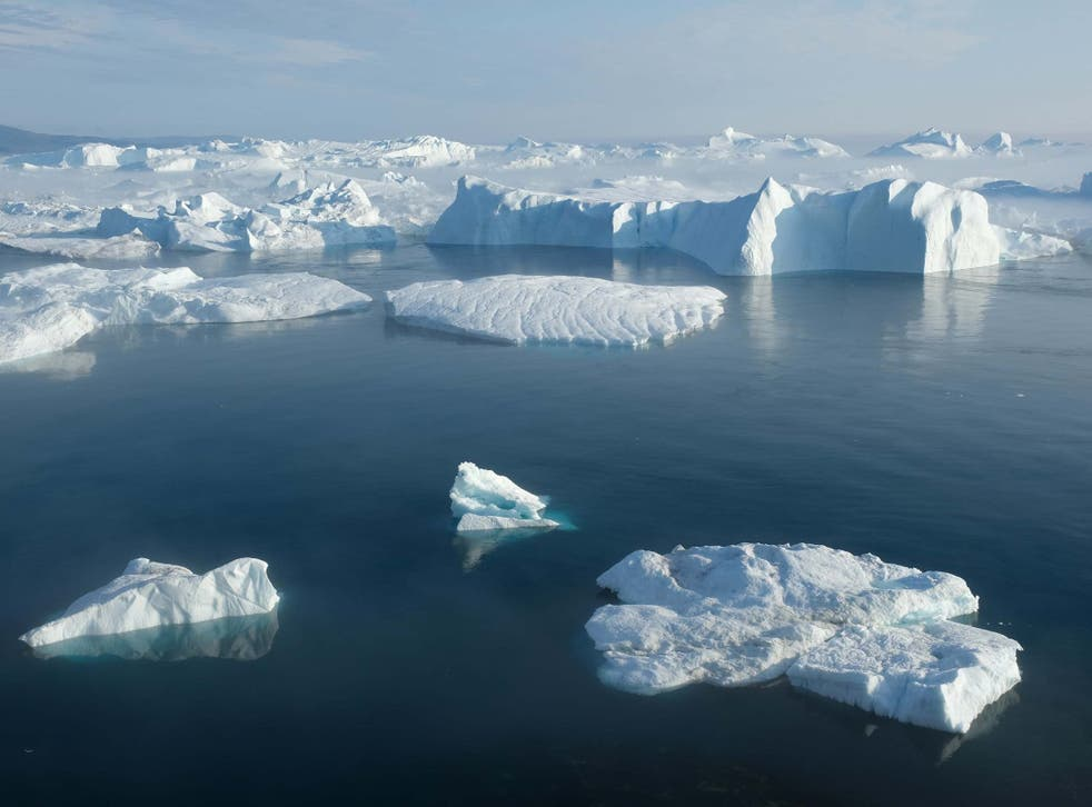 Icebergs float in the Ilulissat Icefjord during a week of unseasonably warm weather on 3 August 2019
