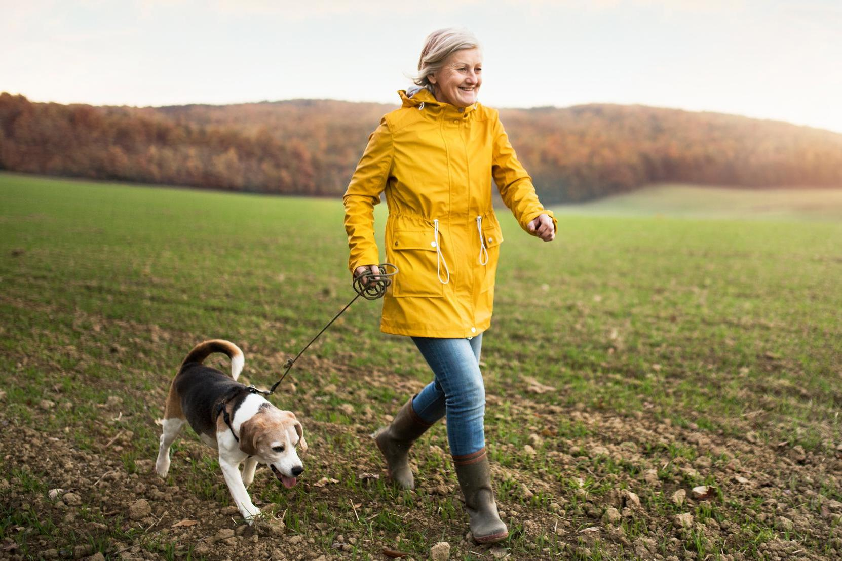 Having a pet dog could lead to better heart health, research suggests