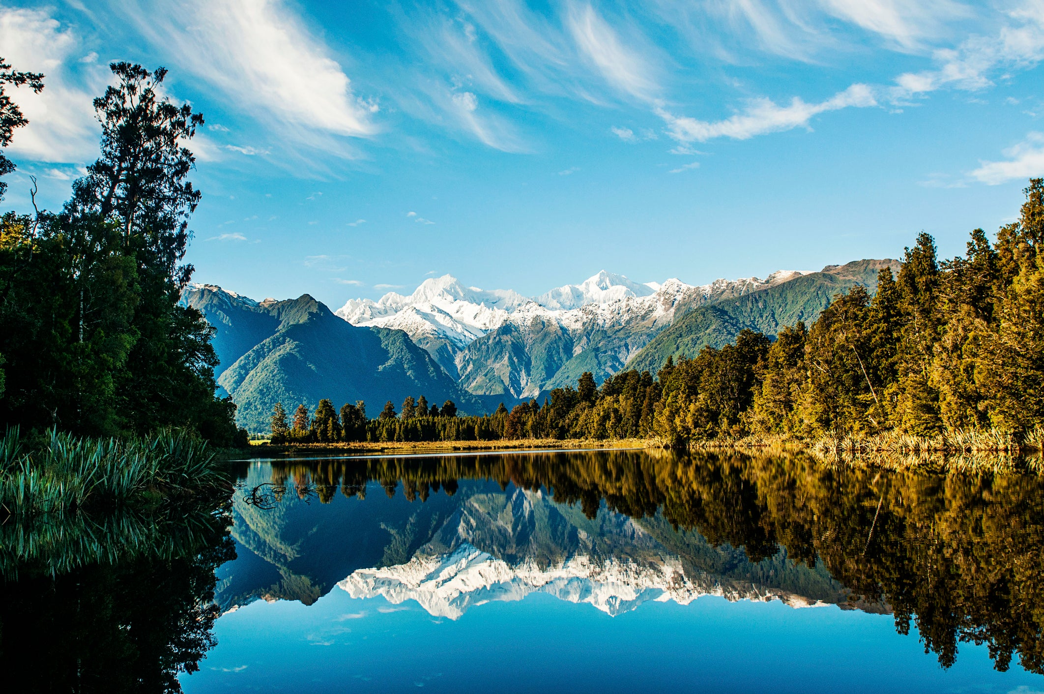 Travellers to New Zealand face being ripped off with online e-visa sites