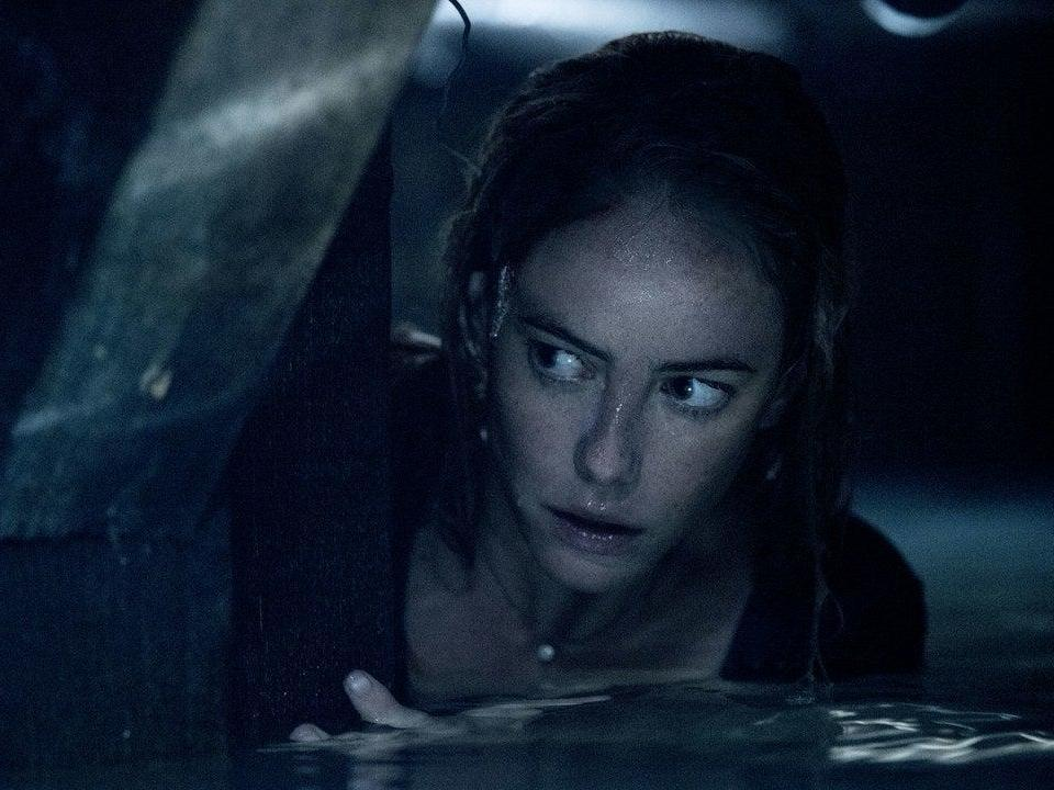 Crawl review: Both too stupid and not stupid enough