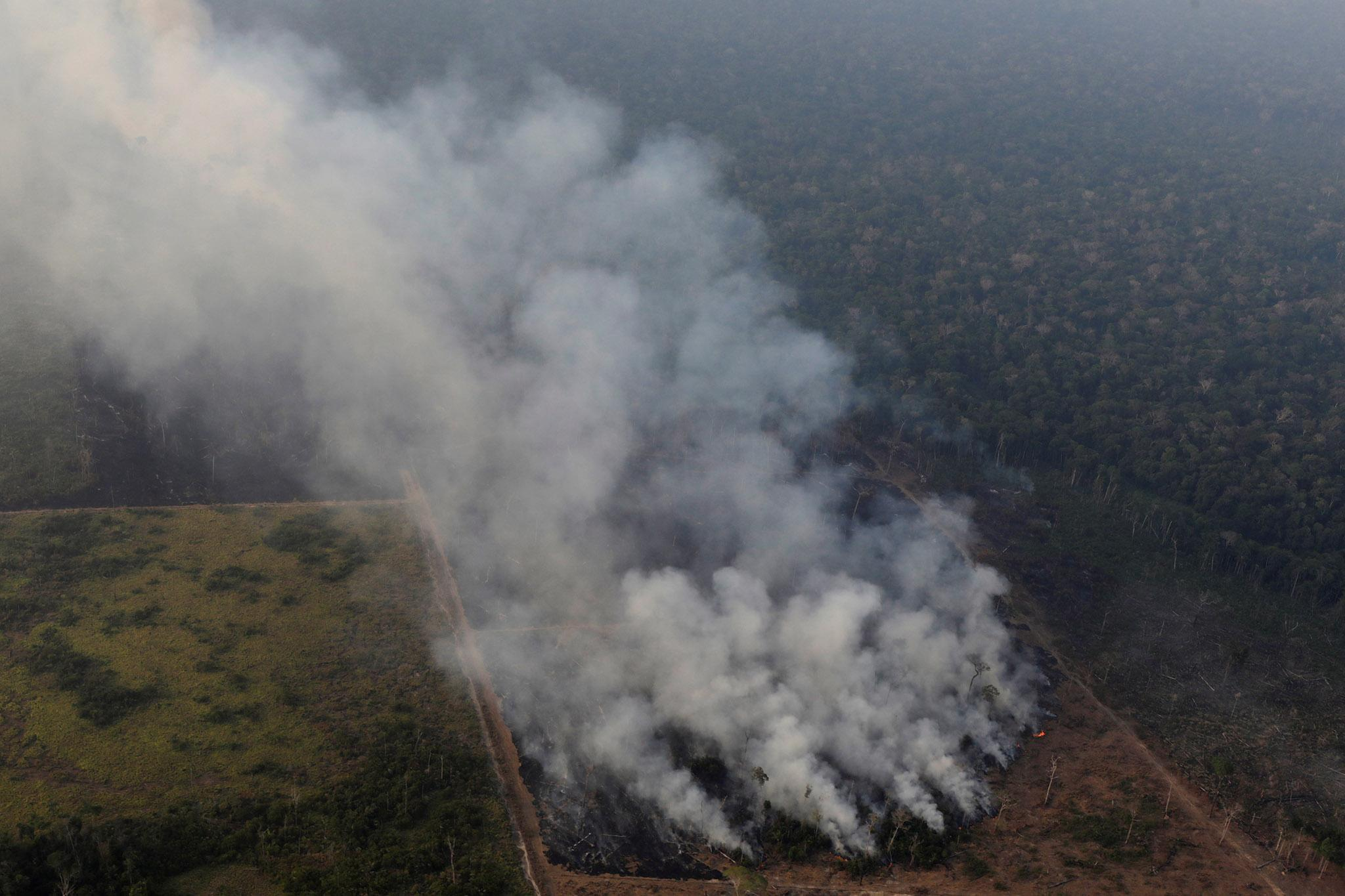 Amazon rainforest fires and deforestation approaching disastrous irreversible tipping point, scientists warn