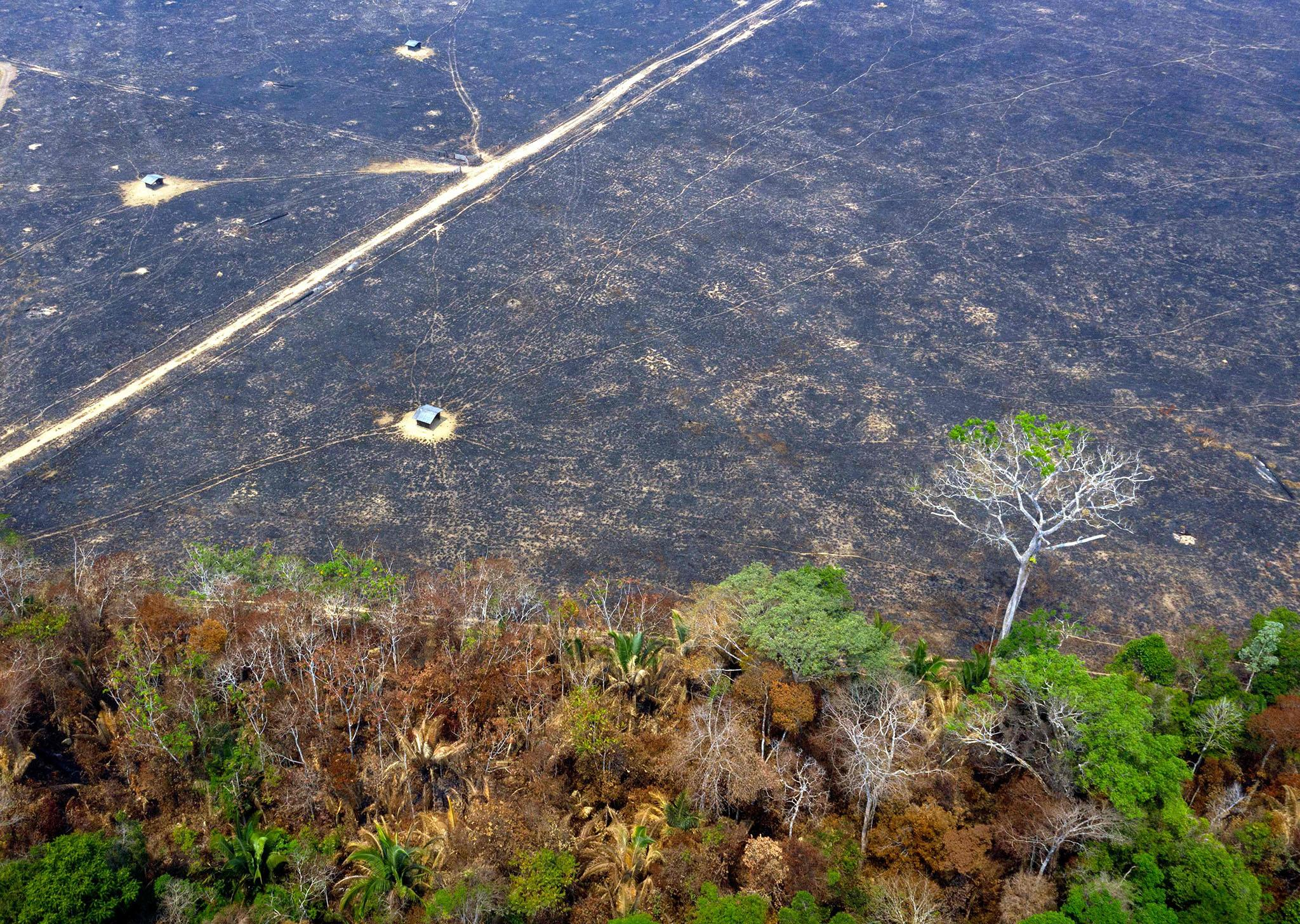 Amazon Rainforest Fires Melting Glaciers More Than 1 250 Miles