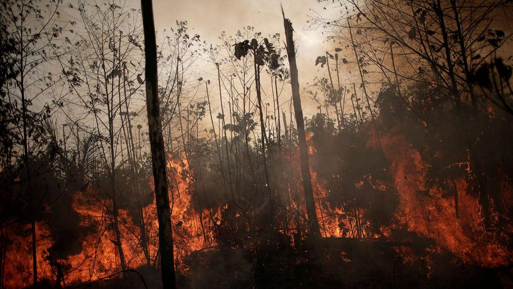 Amazon Rainforest Fires Melting Glaciers More Than 1 250 Miles