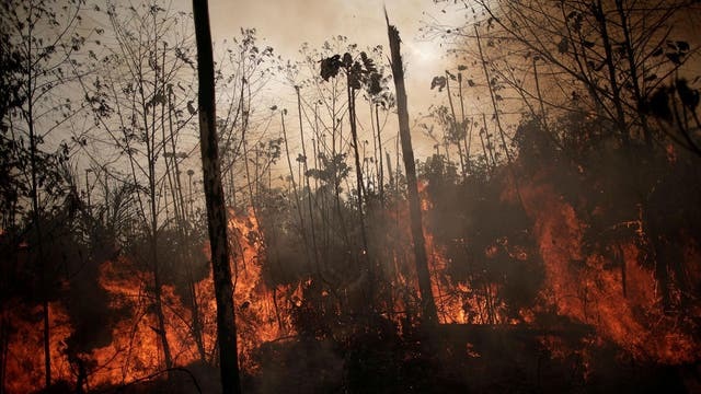 Fire rages in the Amazon rainforest in the Brazilian state of Rondonina on August 23