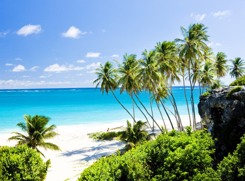 Christmas in Barbados? Yes please...