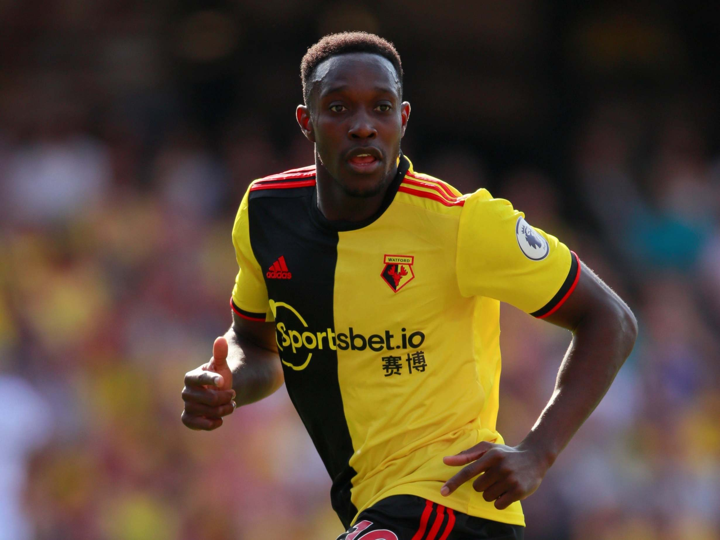 Watford news: Javi Gracia will not rush Danny Welbeck as needs time to get back to his best