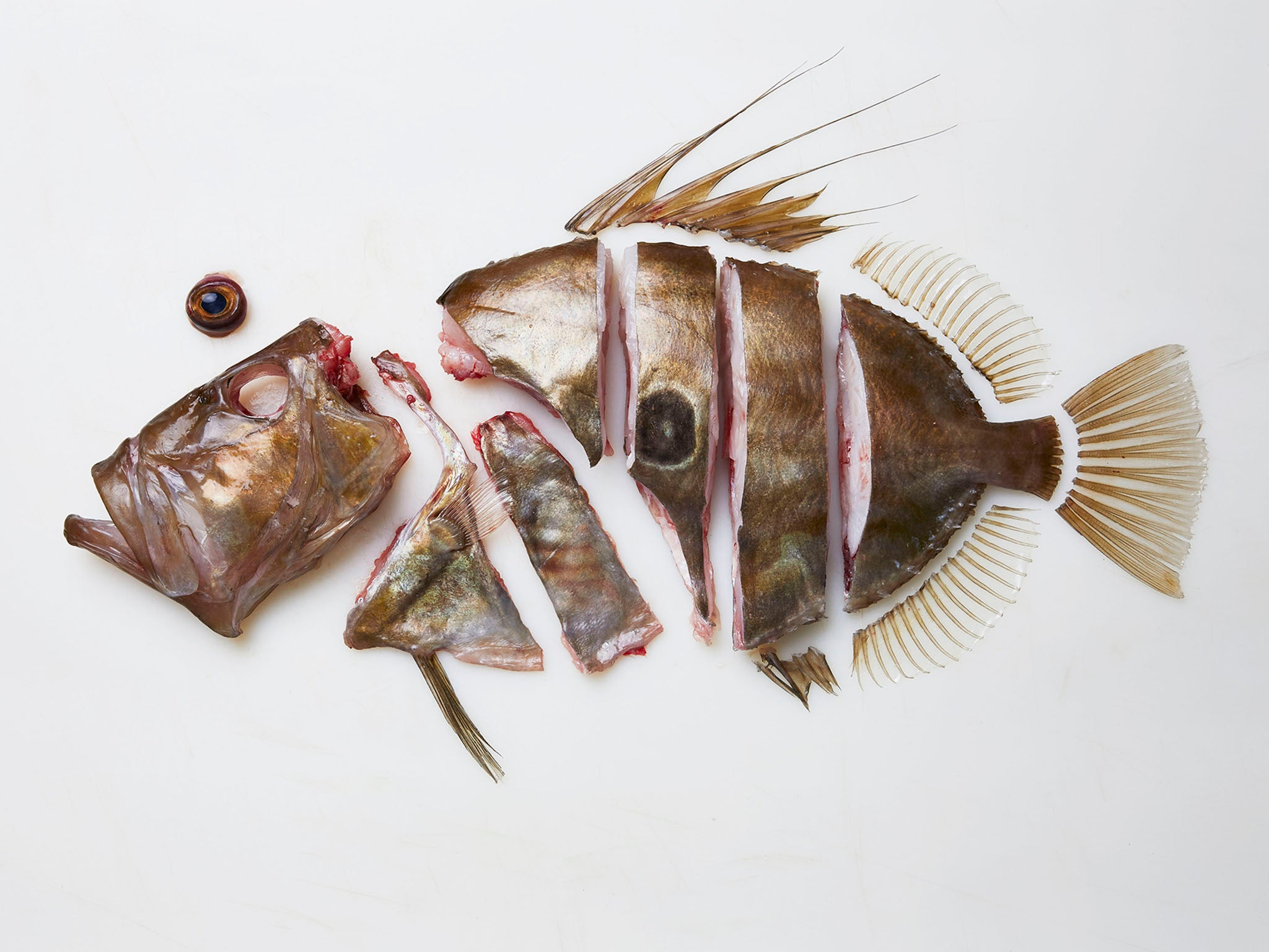 Gill-to-fin eating: Why we need to widen the net and eat more challenging fish cuts