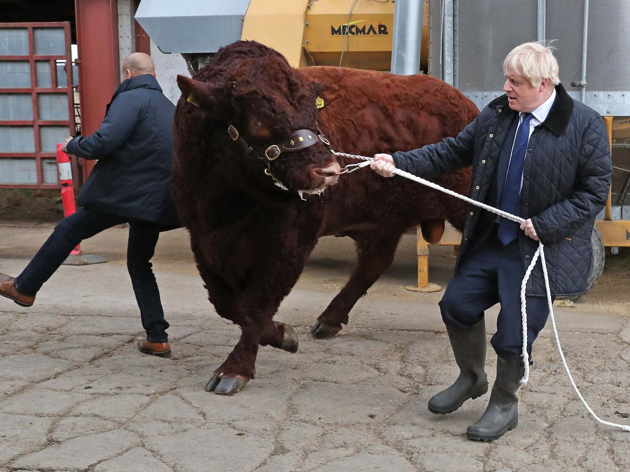 Boris Johnson news: Parliament passes law to halt no-deal Brexit, as PM insists Loch Ness monster could exist and grapples with bull