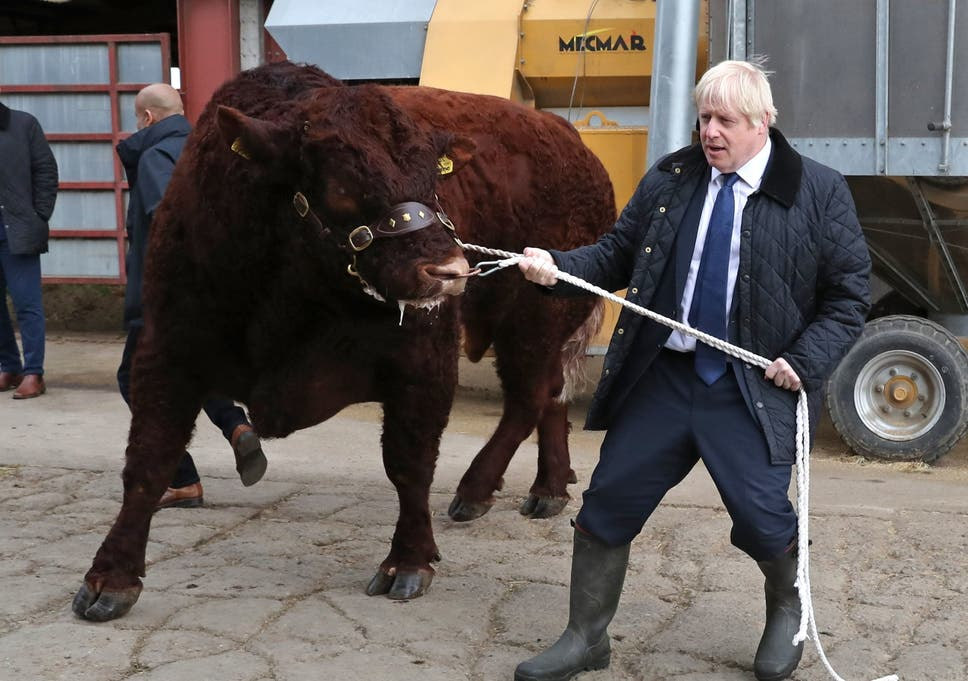 Image result for boris johnson and alister jack""