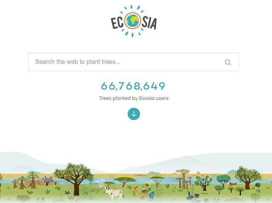 Ecosia: Could a search engine that plants trees really help save the Amazon?