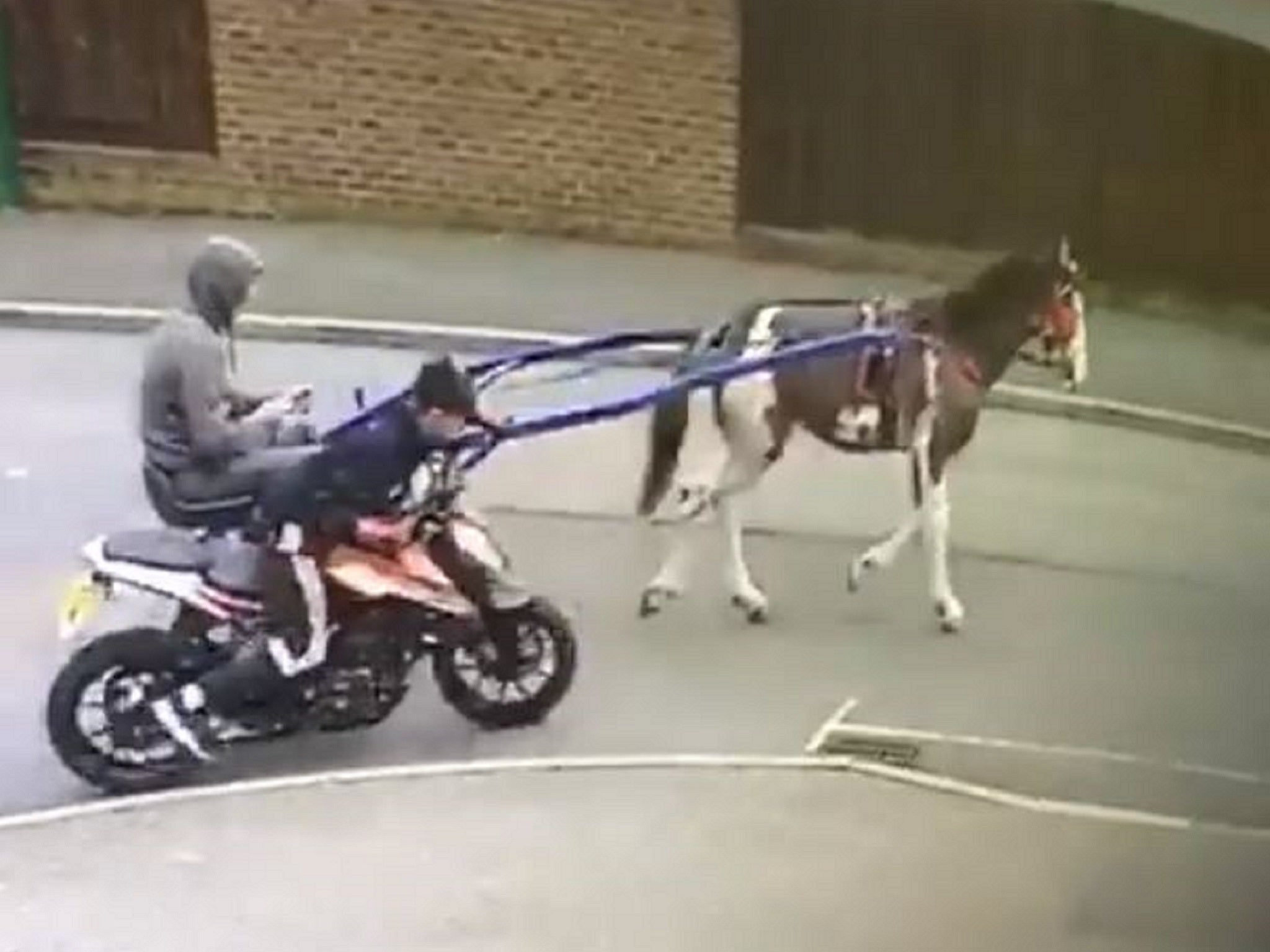 Stolen motorbike 'towed away by horse and two people'