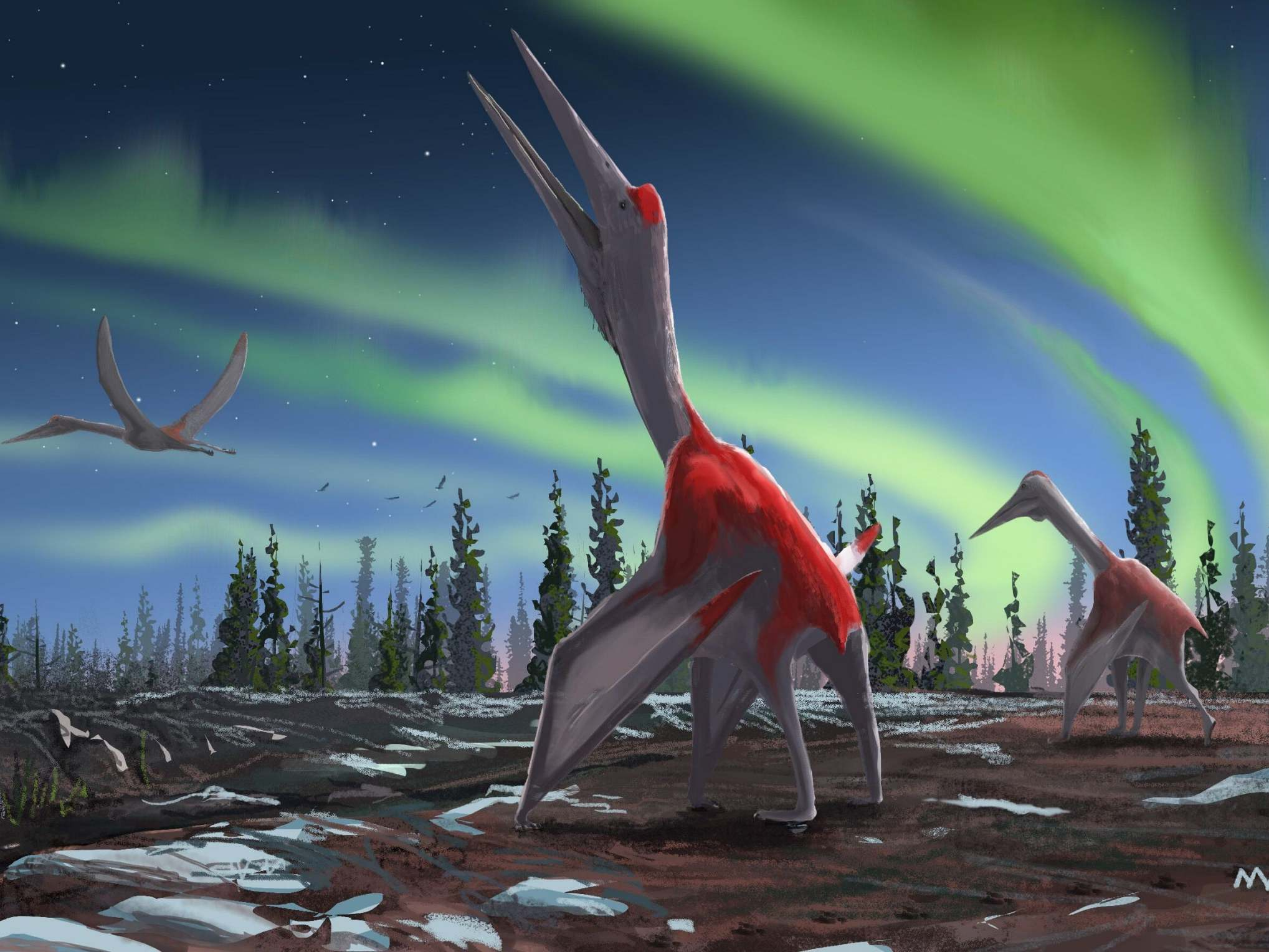 'Frozen Dragon of the North': New species of flying creature the size of small plane identified in Canada