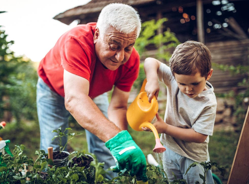 'Ecotherapy uses nature consciously to support wellbeing and recovery,' says expert