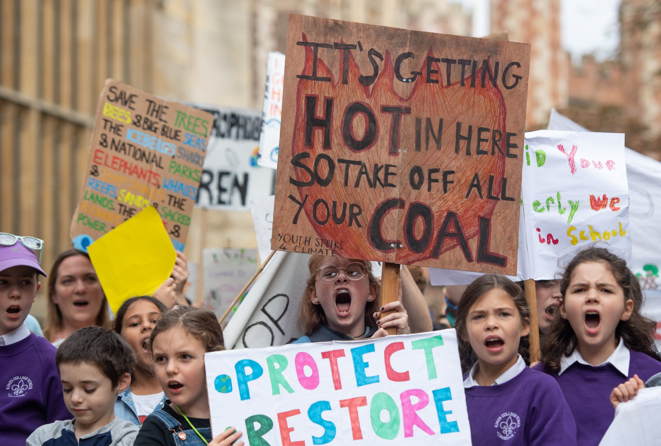 Global Climate Strike: Best signs from protests around the world
