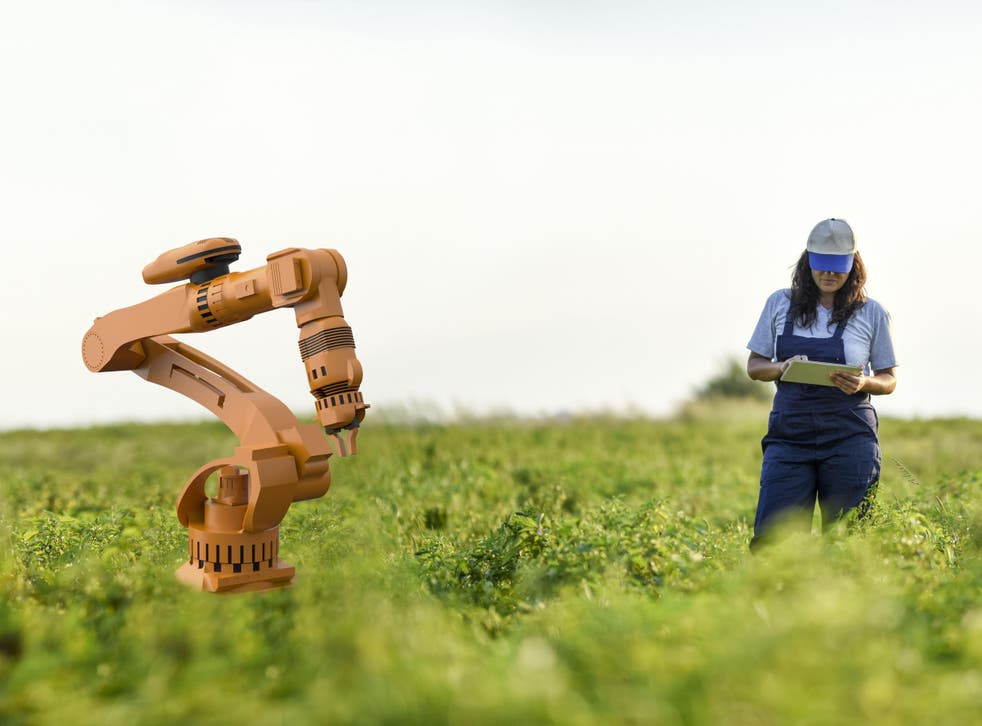 Robots have taken over many agricultural jobs that used to be done by humans
