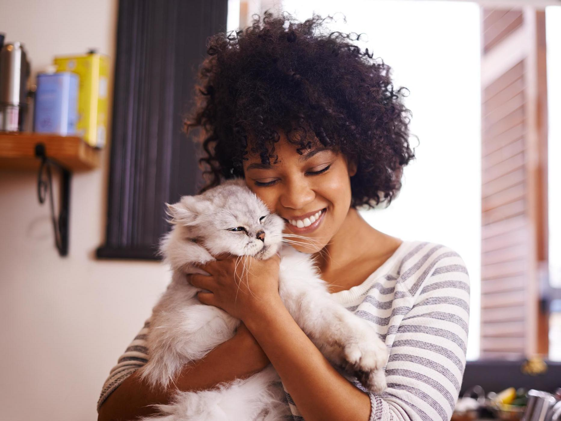 Cats are just as loyal to their owners as dogs, study finds
