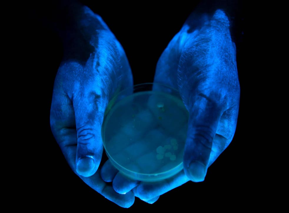 An experiment by King's College London students using glow gel found bacteria for some of the UK's most prevalent illnesses on their hands after they had been washed