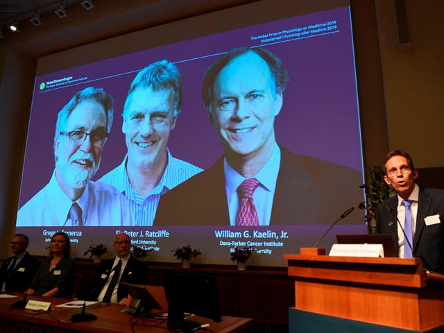 William Kaelin and Gregg Semenza of the US and Peter Ratcliffe of Britain were announced the winners of the 2019 Nobel Medicine Prize at the Karolinska Institute in Stockholm, Sweden, on 7 October