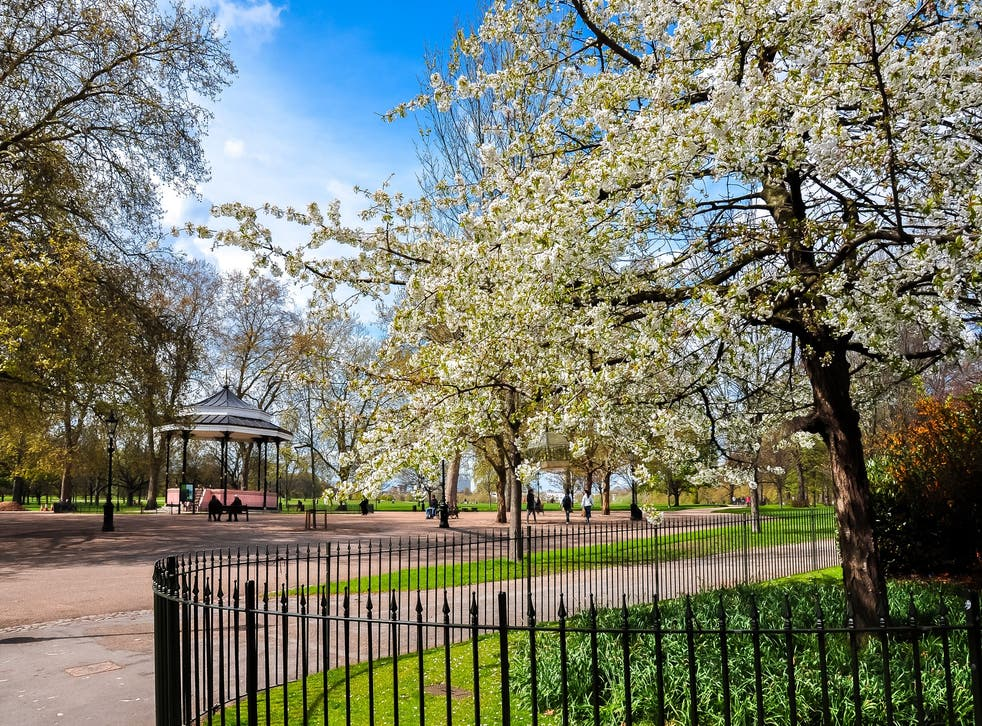 London's parks are perfect places for kids to burn off energy