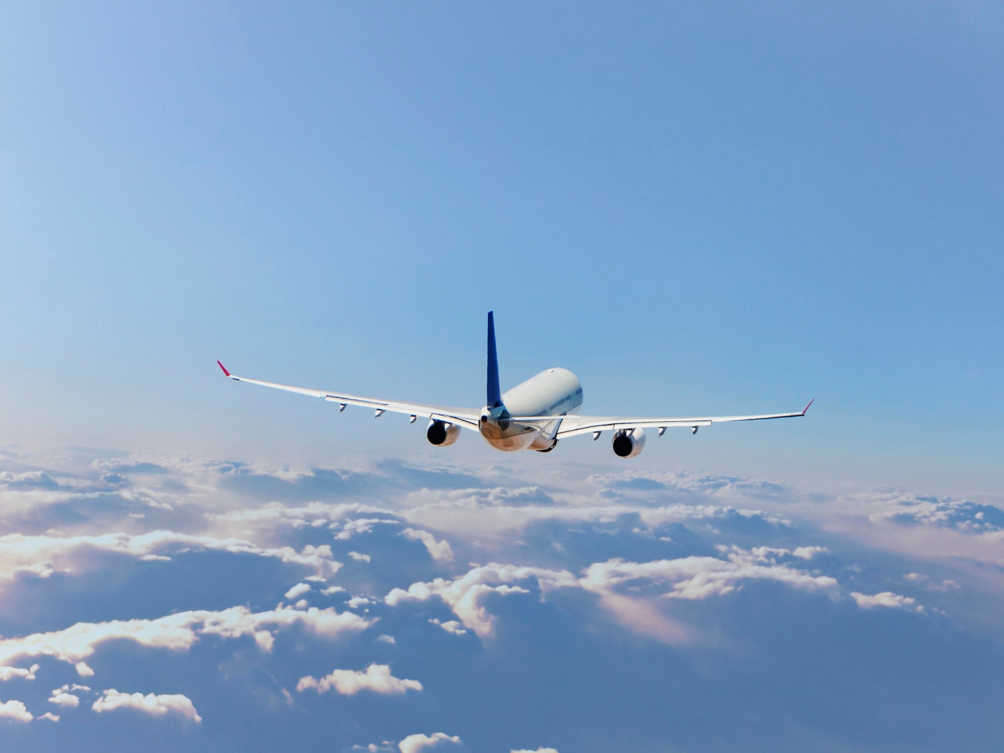 Ban air miles and stop frequent flyers to combat climate change, rep…