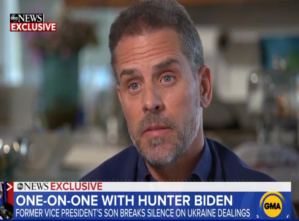 Hunter Biden (Picture: ABC News)