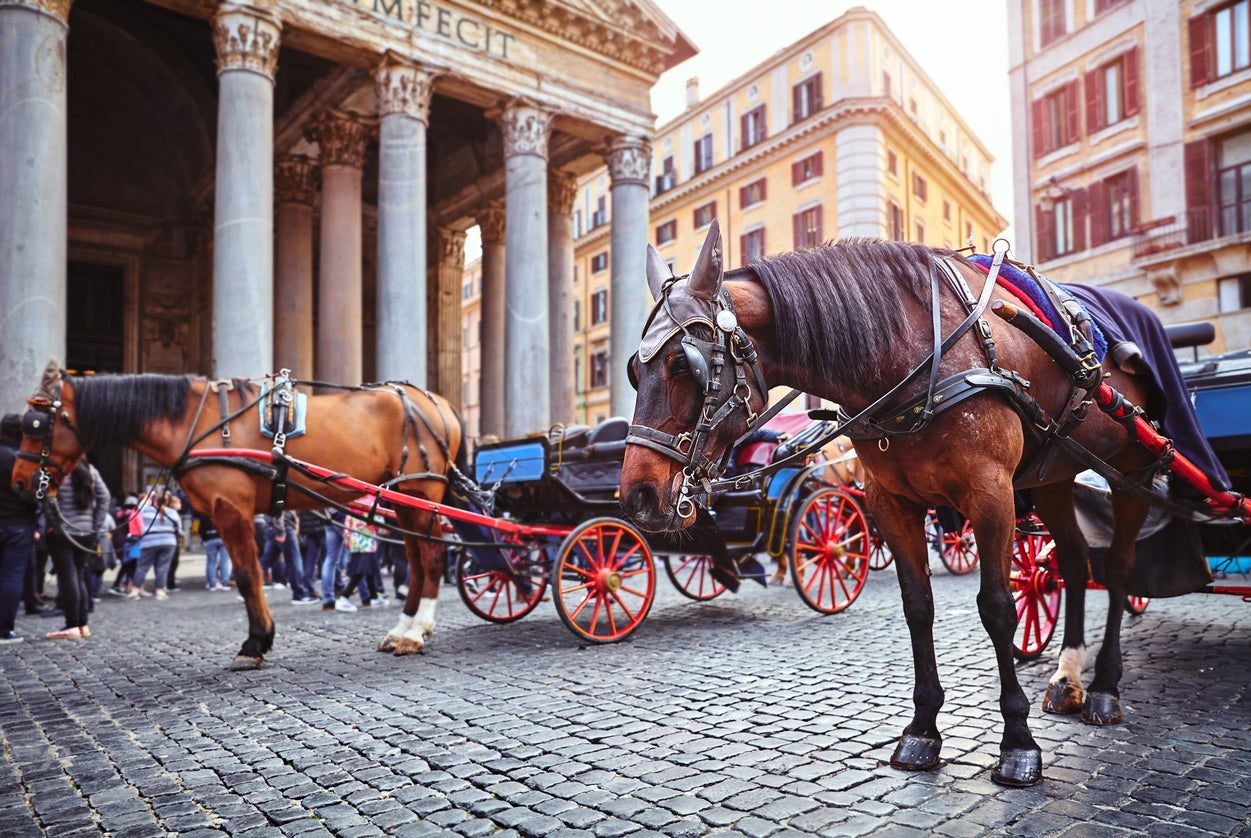 Rome's horse-drawn carriages labelled 'animal abuse' after video sho…