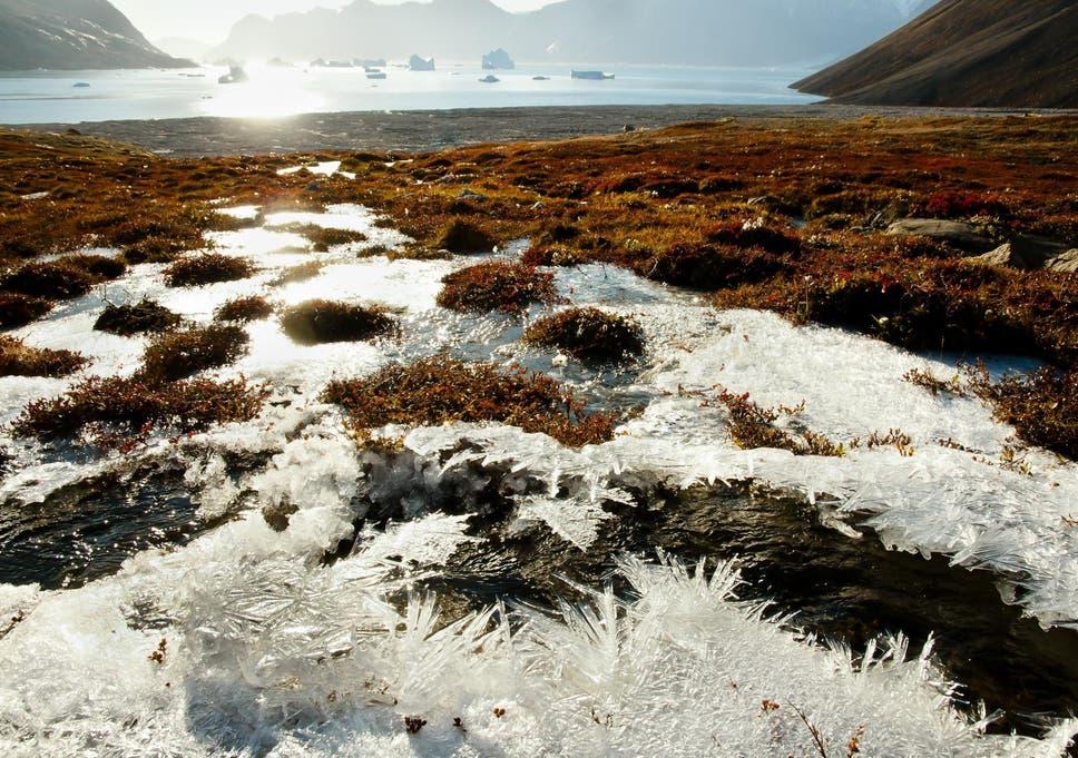 Imagini pentru permafrost