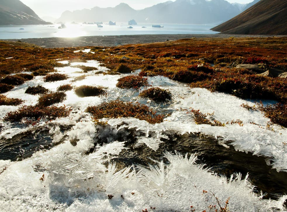 By 2100, winter carbon dioxide emissions from the Arctic could increase by 41 per cent under a worst-case scenario