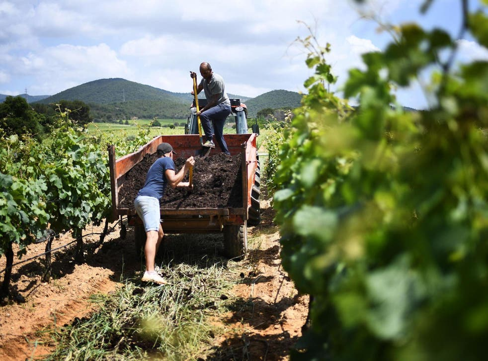 There are still many benefits to organic farming (such as increasing soil fertility, biodiversity and and less use of pesticides) but it needs to be mixed with conventional methods