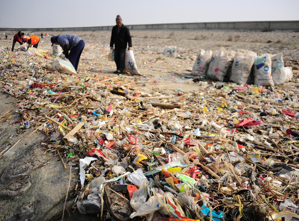 Single-use plastics have been classified as one of the world's biggest environmental challenges by the United Nations