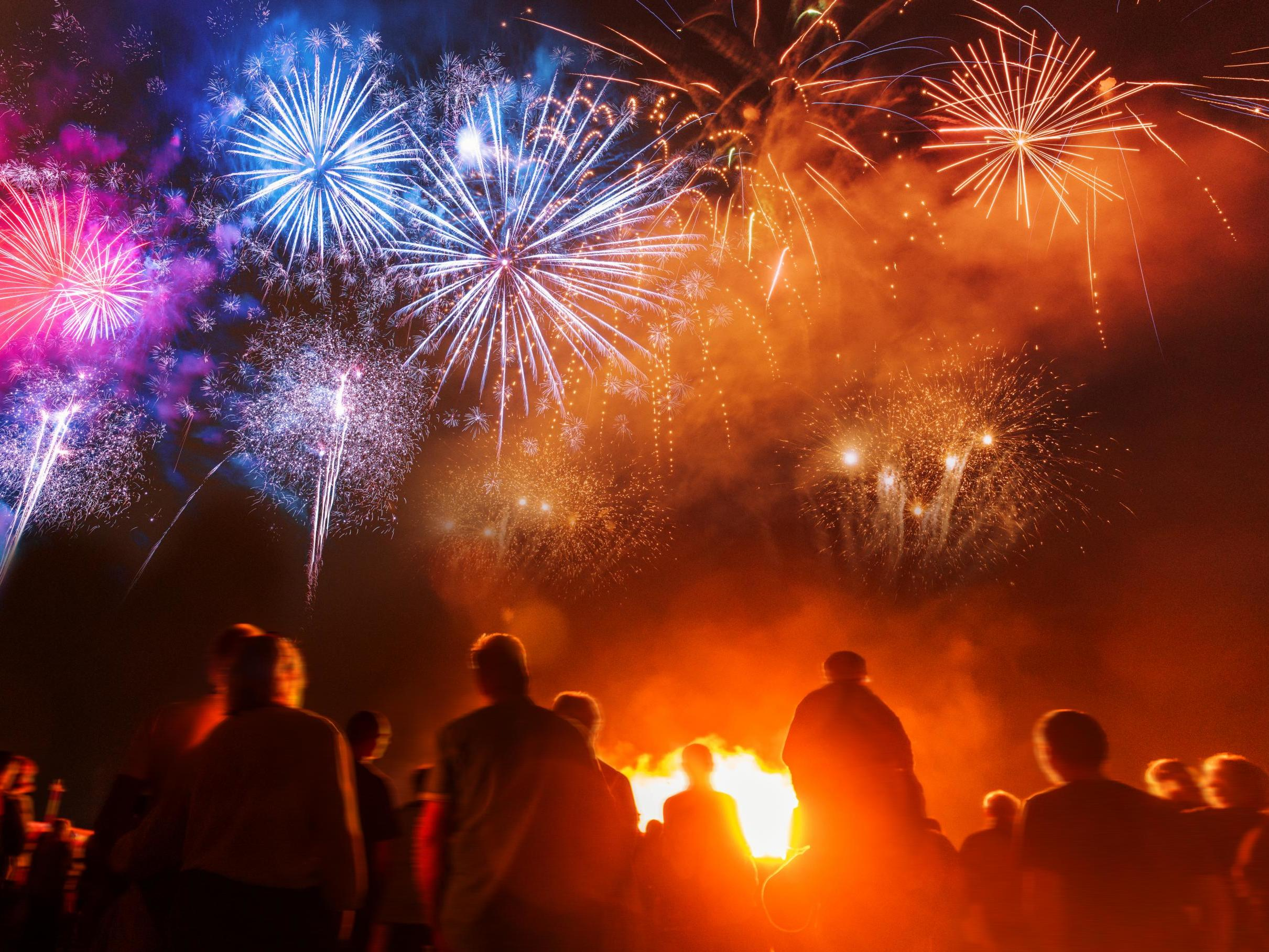 MPs to consider fireworks sales ban as anger mounts over effect on animals