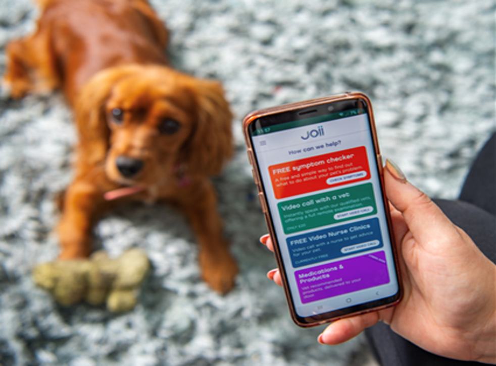 You can use the app to help diagnose your pet from home