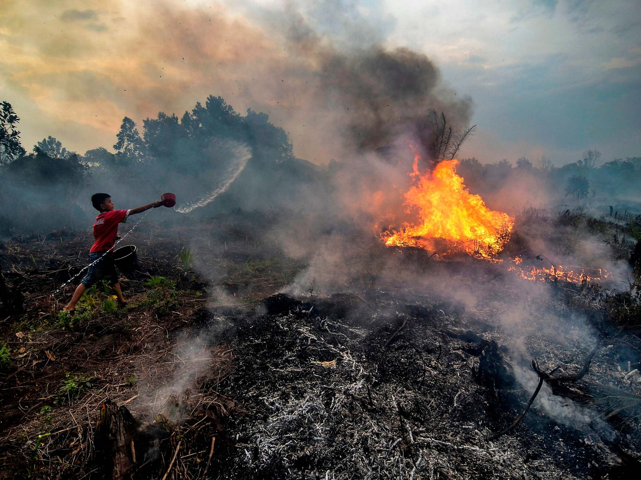 Nestle and Unilever 'linked to Indonesian forest fires engulfing sou…