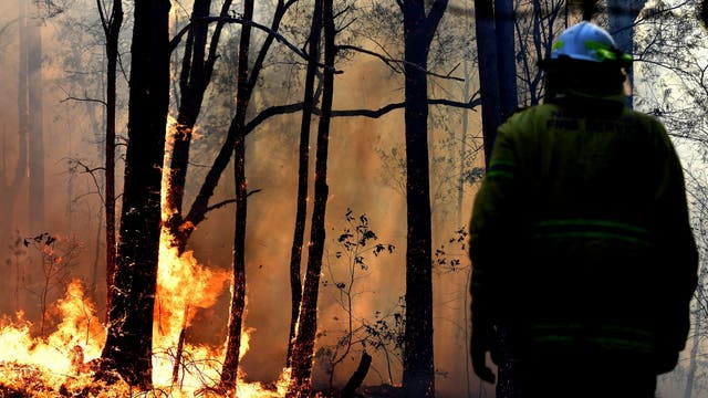 A firefighter works on a bushfire believed to have been sparked by a lightning strike that has ravaged an area of over 2,000 hectares in northern New South Wales state