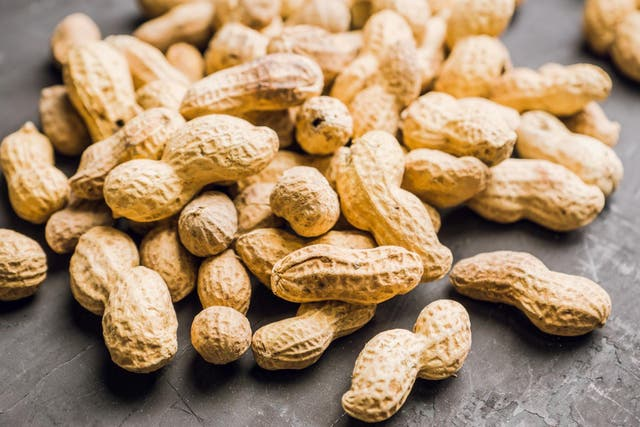 New treatment could stop peanut allergy temporarily (Stock)