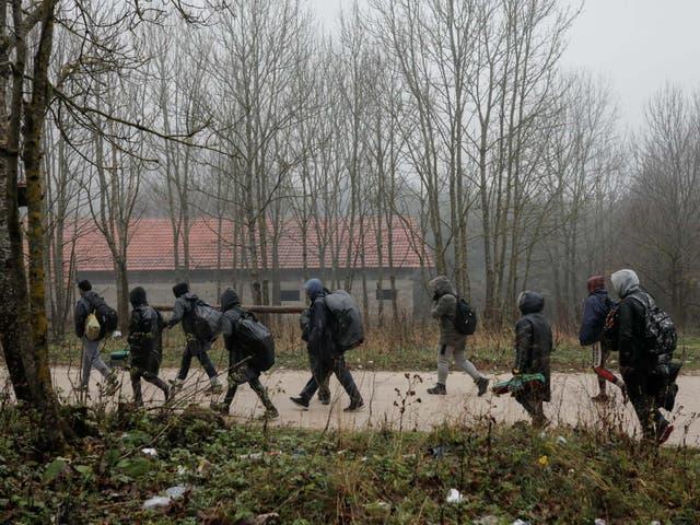 Migrants walk through the woods near Bihac in Bosnia before trying to cross the border into Croatia