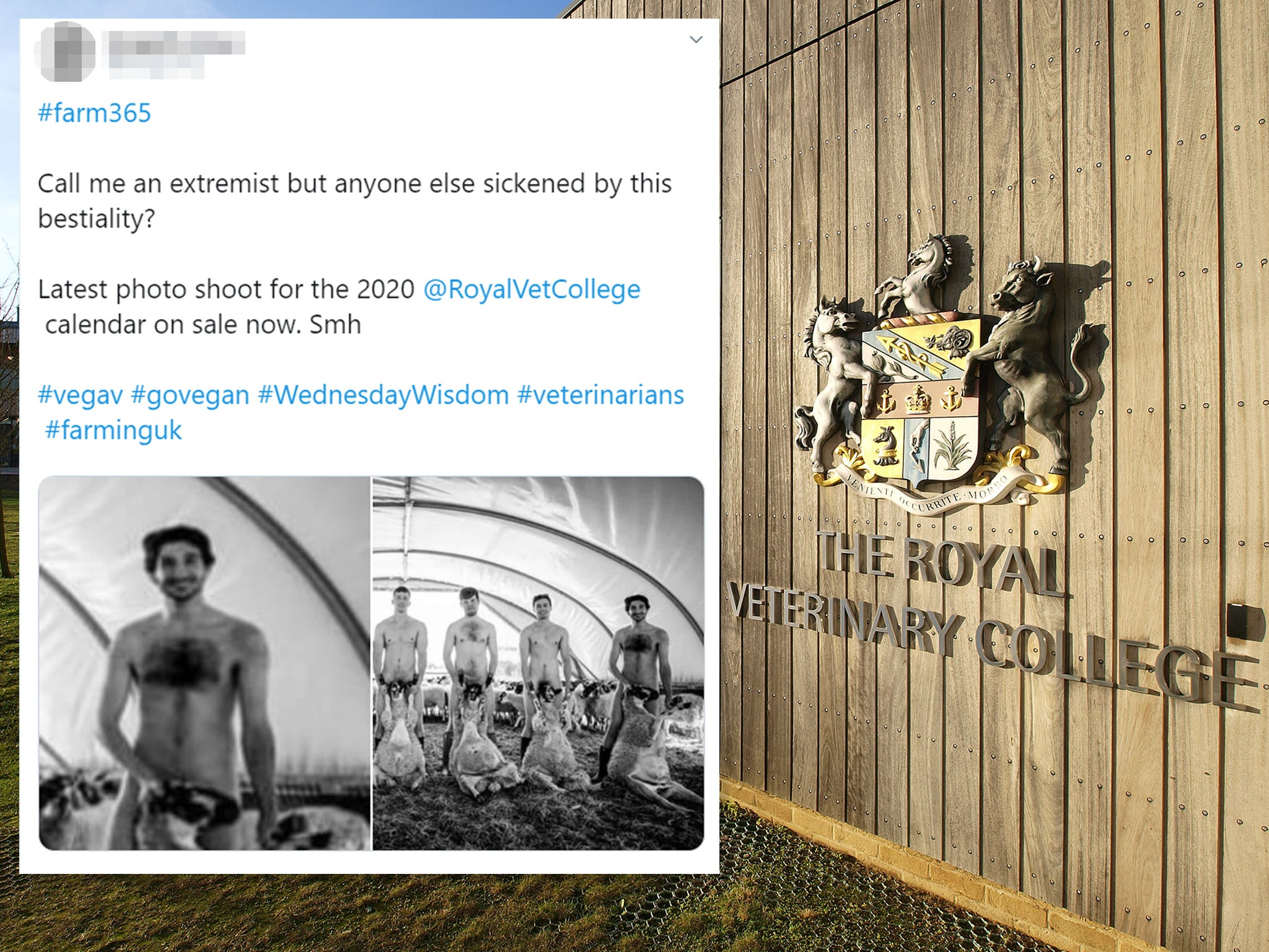 Royal Veterinary College removes naked calendar after backlash from …