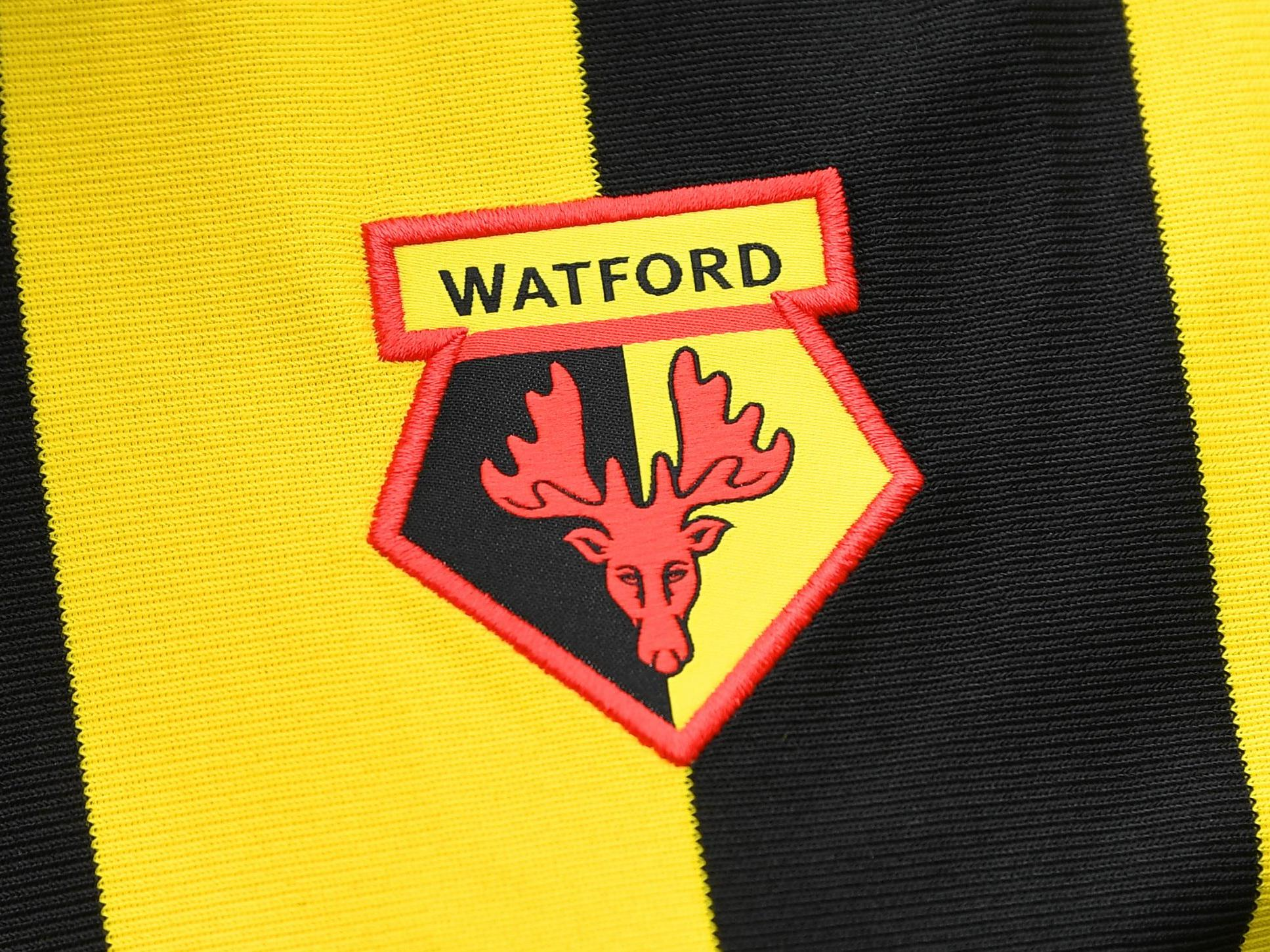 Watford Badge Hornets Opt Against New Crest After 4 000 New Designs The Independent The Independent