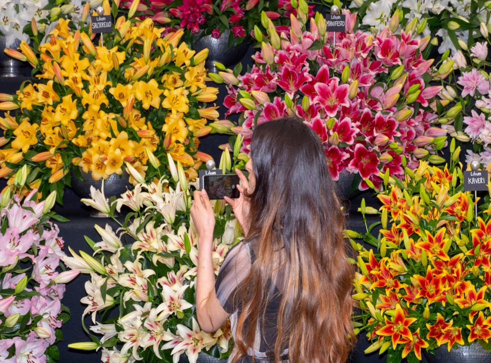 2020's Chelsea Flower Show will promote an environmentally sustainable future