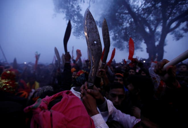 GADHIMAI HINDU FESTIVAL: WORLD'S 'LARGEST ANIMAL SACRIFICE' UNDERWAY IN DEFIANCE OF BAN