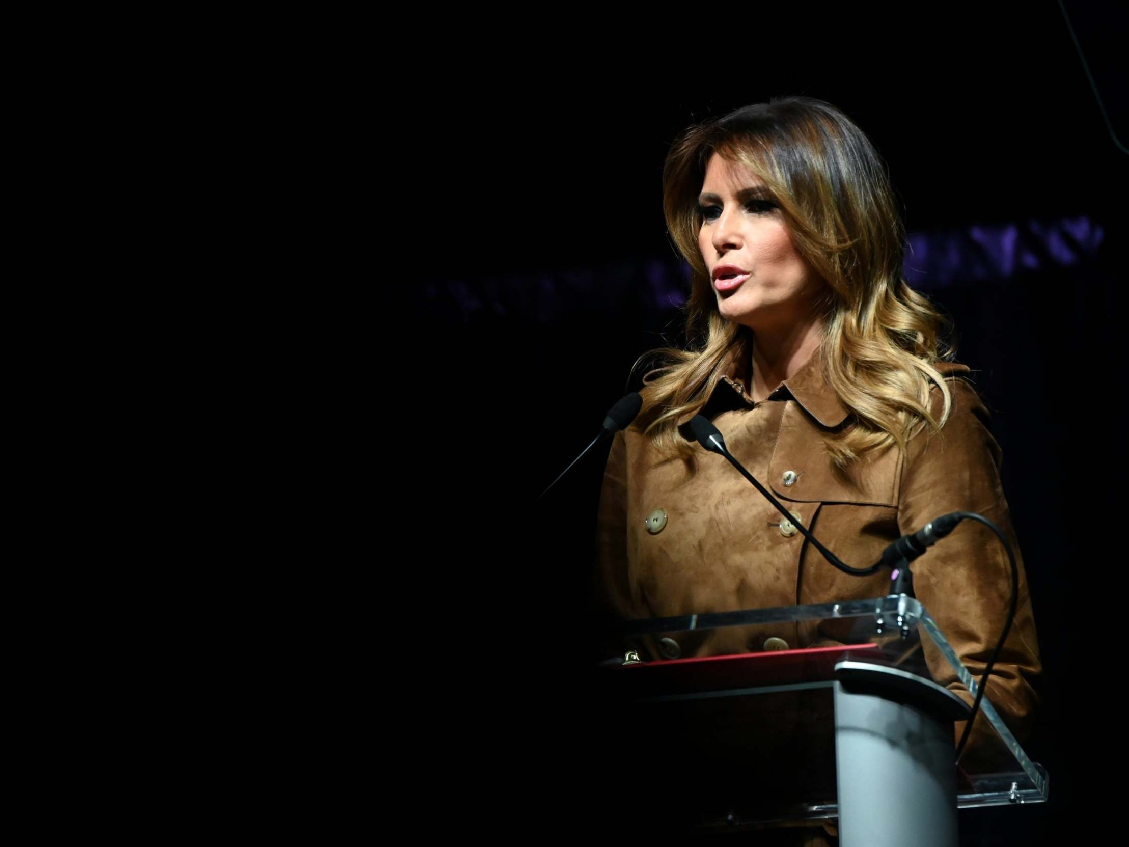 Melania Trump book reveals nude photo suspicions and claim first lady and president sleep on different floors