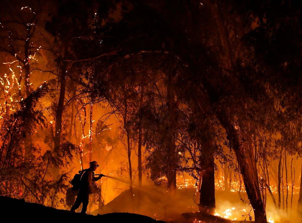 A firefighter battles a wildfire known as the Maria Fire in Somis, California in October