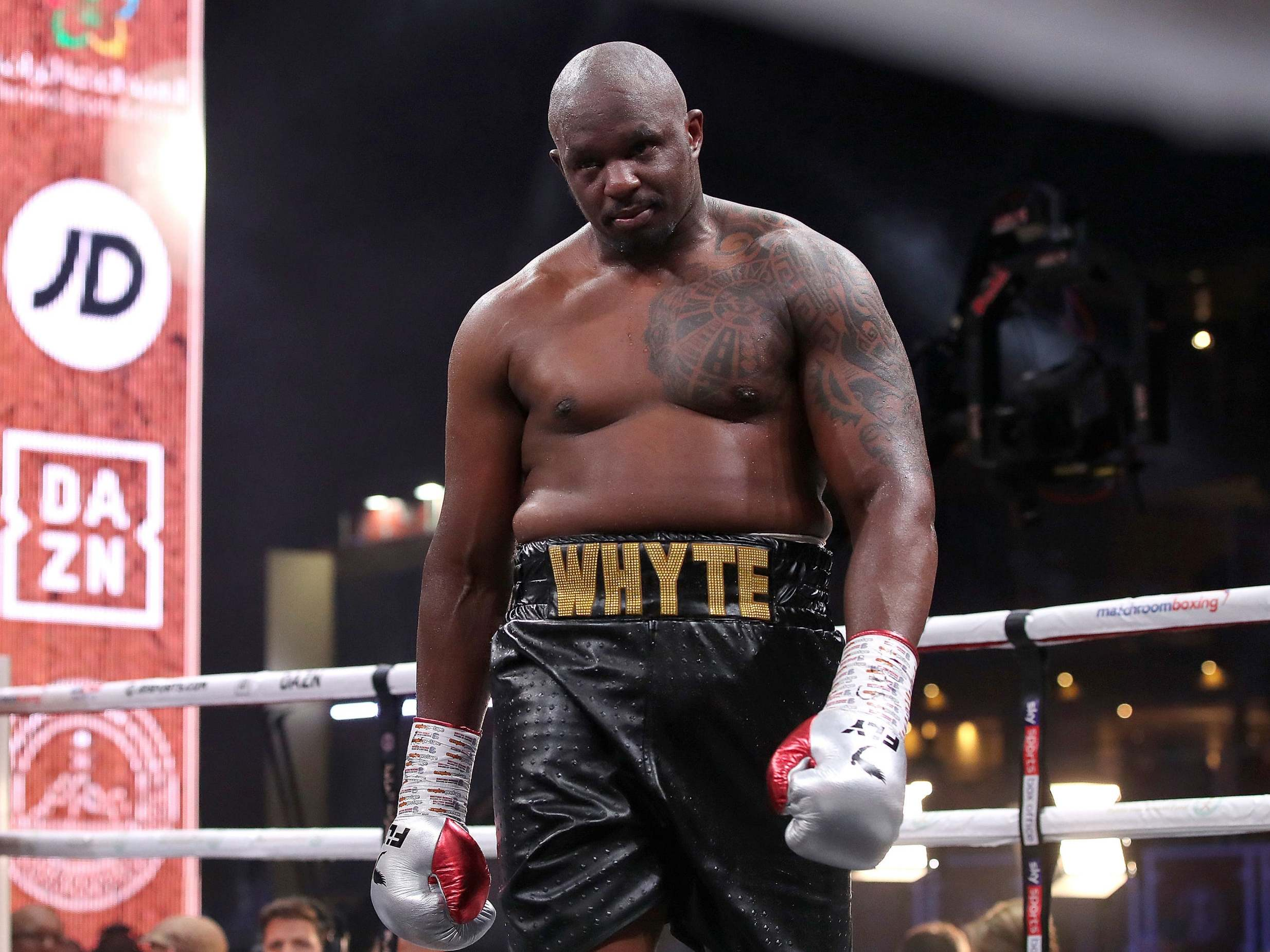 Dillian Whyte labels Andy Ruiz Jr 'Jabba the Hutt' as he weighs up his next fight opponent
