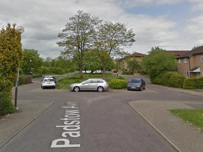 Milton Keynes stabbing: Five men arrested on suspicion of murder after woodland killing
