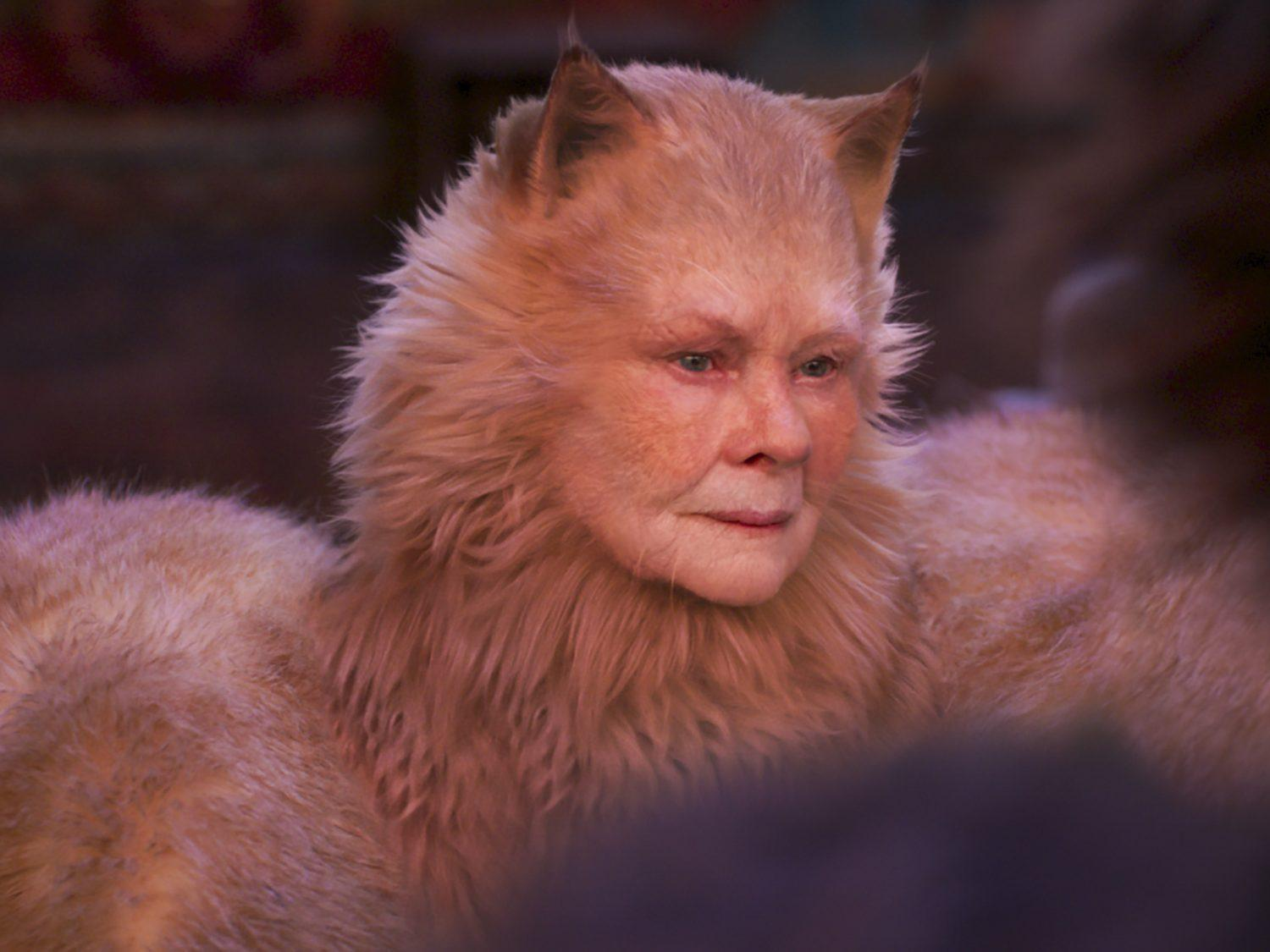 Cats mistake revealed as Judi Dench\u0027s character spotted with