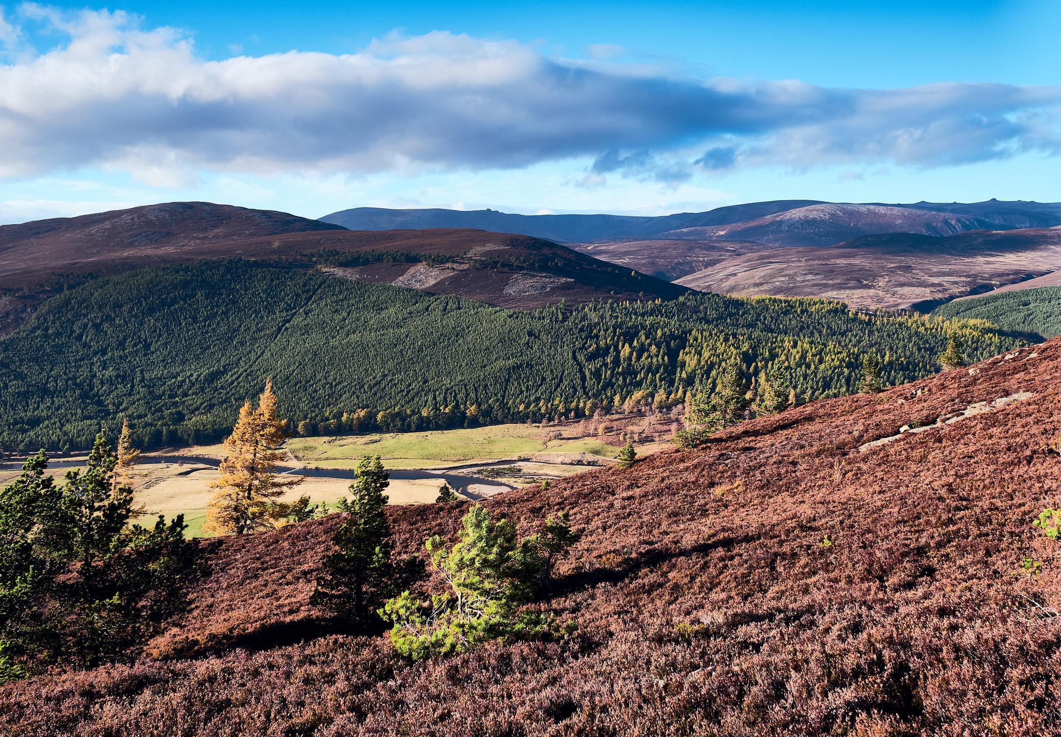 Ben Macdui, Cairngorms  National Park