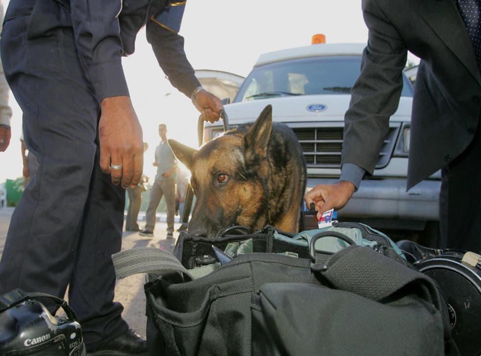 A sniffer dog is used by Egyptian security forces to check luggage